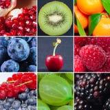 Frucht Stockfotografie
