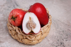 Frucht Acmella-oleracea (jambu, Zahnschmerzenanlage, paracress, wählen Lizenzfreie Stockfotografie