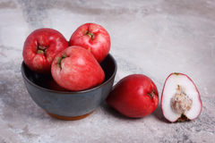 Frucht Acmella-oleracea (jambu, Zahnschmerzenanlage, paracress, wählen Stockfotos
