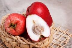 Frucht Acmella-oleracea (jambu, Zahnschmerzenanlage, paracress, wählen Lizenzfreies Stockbild