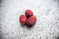 Frucht der Lippenstiftpalmen- oder -siegellackpalme oder der Radschapalme stockbild