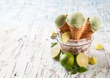 Frucht-Eiscreme Stockbild
