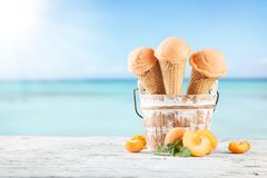 Frucht-Eiscreme Lizenzfreie Stockbilder