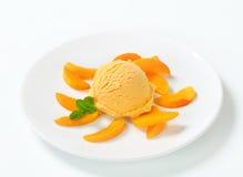 Frucht-Eiscreme Stockbilder