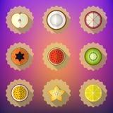 Frucht-flacher Vektor-Ikonen-Satz Schließen Sie Apfel, Zitrone, Papaya, Stern mit ein Lizenzfreies Stockbild