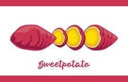 Frucht-Illustrationssatz Süßkartoffel in ganzem und geschnitten lizenzfreie abbildung