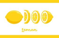Frucht-Illustrationssatz Zitrone in ganzem und geschnitten stock abbildung