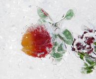 Frucht im Eis Lizenzfreie Stockbilder