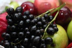 Frucht im Korb stockfoto
