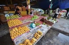 Frucht klemmt in Kota Kinabalu Sabah fest Lizenzfreies Stockbild