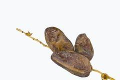Frucht mit drei Datteln Stockfotos