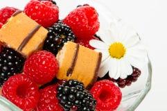 Frucht-Nachtisch lizenzfreies stockfoto