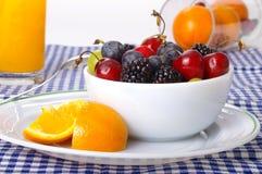 Frucht-Platte Lizenzfreies Stockbild