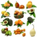 Frucht-Probeflasche Stockfotos