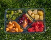 Frucht-Servierplatte Stockfotografie