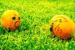 Frucht-Terror vergeudete Nahrung lizenzfreies stockfoto