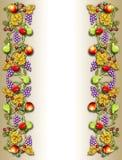 Frucht- u. Veggiereberand Stockbilder