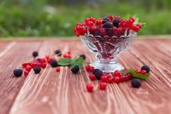 Frucht und Beeren Stockfoto