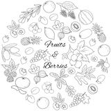 Frucht-und Beeren-runder Satz Lizenzfreie Stockbilder