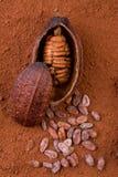 Frucht und Puder des Kakaos 3d Lizenzfreie Stockfotografie