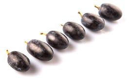 Frucht V der blauen Trauben Lizenzfreie Stockfotos