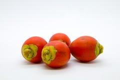 Frucht von Raja-Palme auf weißem Hintergrund, lizenzfreie stockfotografie
