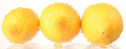 Frucht - Zitrone stockbilder