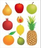 Fruchtansammlung stock abbildung