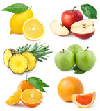 Fruchtansammlung Stockbild