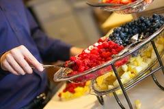 Fruchtanzeige Stockbilder