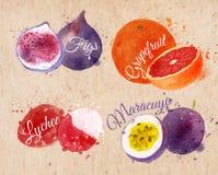 Fruchtaquarellfeigen, Pampelmuse, Litschi lizenzfreie abbildung