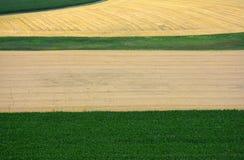Fruchtbare Felder mit Mais und Korn in der Landschaft von der Höhe stockfotografie