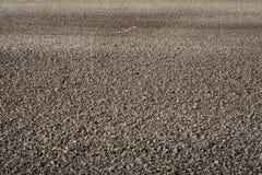 Fruchtbarer Boden Stockbild