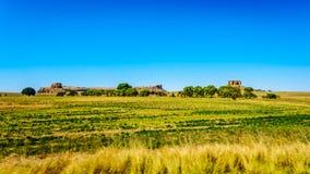 Fruchtbares Ackerland der Freistaatprovinz in Südafrika Stockbild