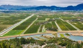 Fruchtbares dalmatinisches Tal Lizenzfreie Stockfotos