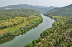 Fruchtbares Tal des spanischen Flusses Ebre Stockfoto
