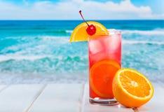 Fruchtcocktail mit orange Scheibe Lizenzfreies Stockbild