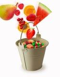 Fruchtfliege in einem Eimer auf einem weißen Hintergrund Lizenzfreies Stockfoto