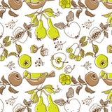 Fruchtgarten mit Vogel. nahtloses Muster Lizenzfreie Stockfotos