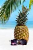 Fruchtige Ananas auf dem Strand Lizenzfreie Stockfotos
