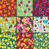 Fruchtiger Hintergrund des nahtlosen Vektors des Fruchtmusters und fruchtbare exotische Tapete mit neuen Scheiben der Wassermelon Stockfotos