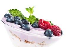 Fruchtjoghurt Lizenzfreies Stockfoto