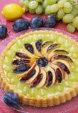 Fruchtkuchen Stockbilder