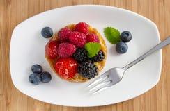 Fruchtkuchen Lizenzfreie Stockfotografie