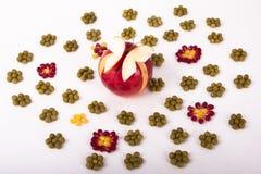 Fruchtkunst Stockbilder