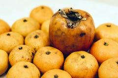 Fruchtplatte auf weißem Hintergrund Mandarinen und Persimonen stockfotografie
