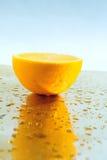 Fruchtsaft lizenzfreie stockfotos