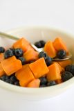 Fruchtsalat-Papaya und Blaubeere Stockbilder