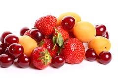 Fruchtsalatbestandteile stockbild