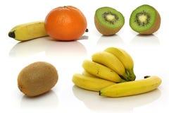 Fruchtsammlung Lizenzfreie Stockbilder